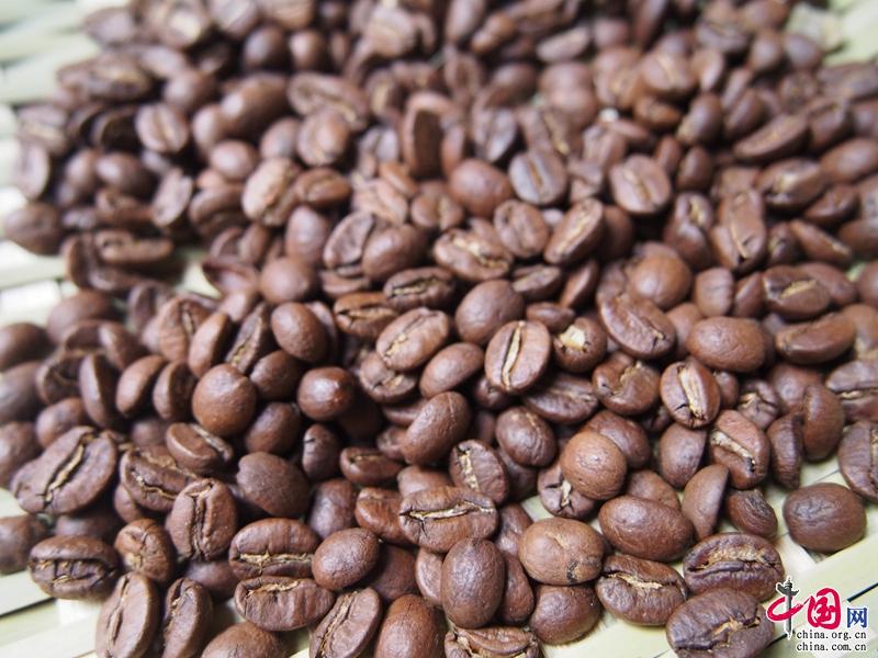 普洱咖啡·全球共享首届普洱国际精品咖啡博览