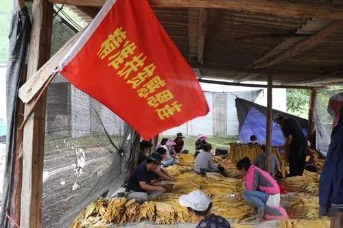 香格里拉五境乡:绘就村民富新蓝图