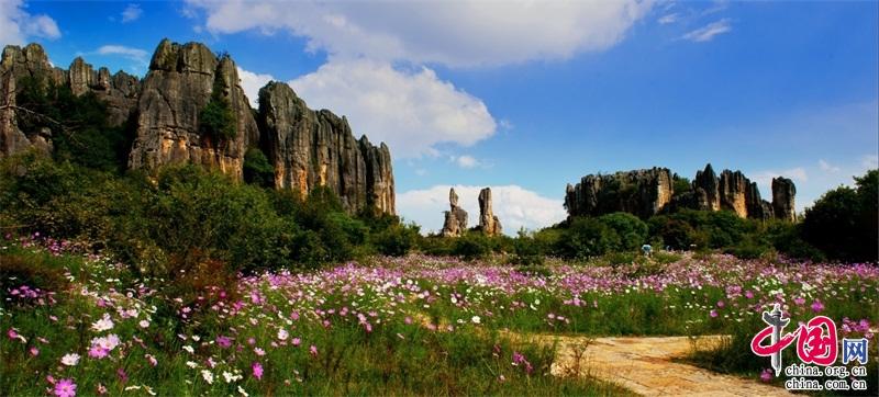 云南石林风景名胜区回馈关爱学子 邀全国高考生免费来