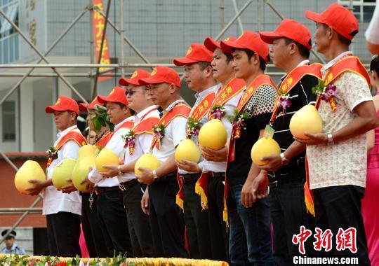 中国柚类第一县再办蜜柚节力拓海外市场(图)