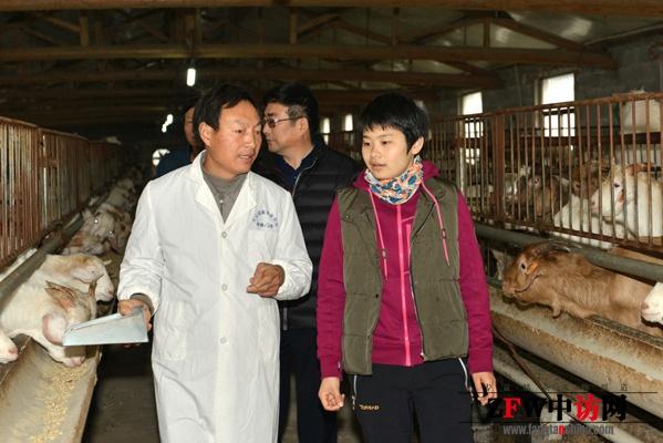 >  品牌产品  海安大公镇是江苏省重点建设的以养殖为主的特色小镇.