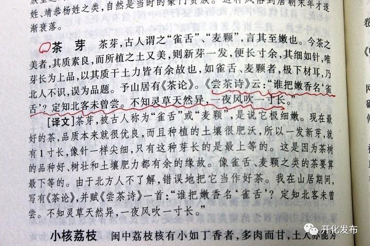 衢州开化龙顶或是芽茶始祖?且看专家怎么说