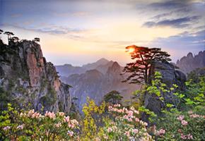 旅游,黄山,管理,景区,保护