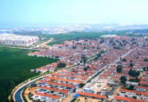朱旺村,建设,文化,村民,发展