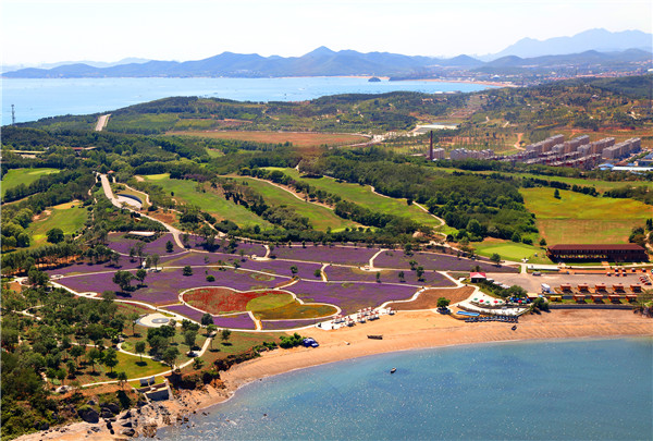 金石缘公园 1988年,被国务院确定为国家级风景名胜区;1992年,被国务院批准为国家旅游度假区; 2005年,被评为国家滨海地质公园;2009年,获中国最佳生态环境保护十大风景区称号;2011年,获评国家5A级旅游景区。2012年,荣膺美国CNN2012年度评选出的中国最美的40个景区之一。2014年,被评为国家海洋公园;2015年,被国家旅游局和环保部评为国家生态旅游示范区。经过二十多年的发展,全区基础设施及服务配套完善,现建成现建成旅游项目有金石文化博览广场(金石蜡像馆、石文化博览园、毛泽东像章