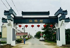 仙桥村,大棚,设计,生态,活动