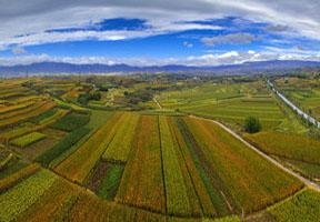 土豆,旅游,文化,饮马池,龙山