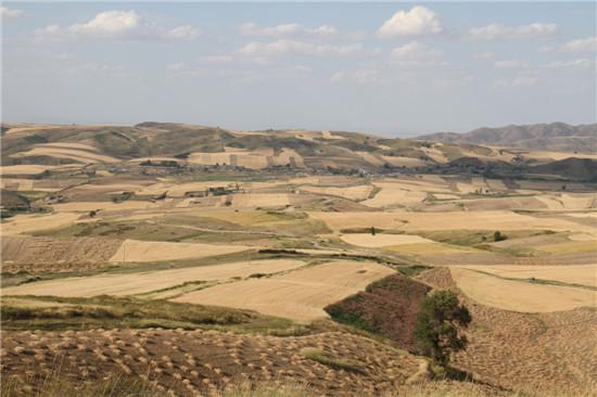壁纸 沙漠 桌面 自然风景 550_366
