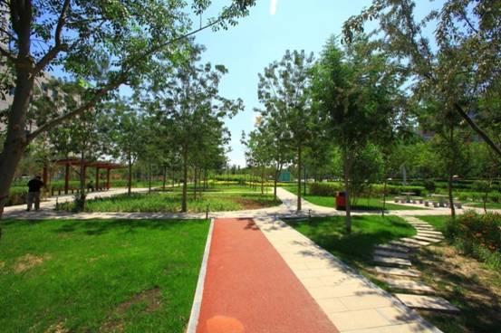 打破传统单调的绿化模式,将道路绿化带建设成景观带游园,在城市cbd为