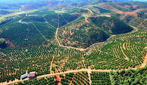 湖南省郴州市:坚持绿色发展 建设生态郴州