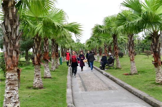 :城东绿廊--白塔公园-四川省营山县