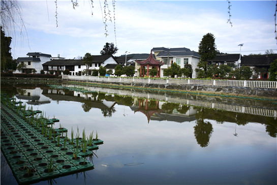 """阮涛)郴州市北湖区瞄准""""羊肉""""做临平城市图片"""